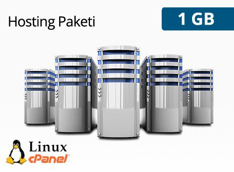 1 GB Hosting Paketi