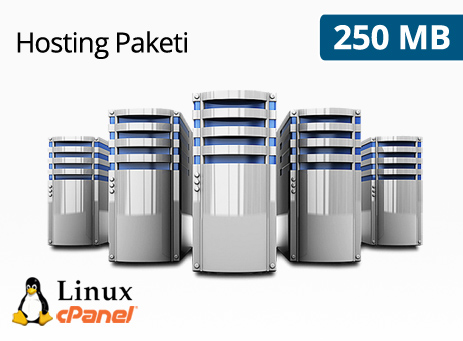 250 MB Hosting Paketi