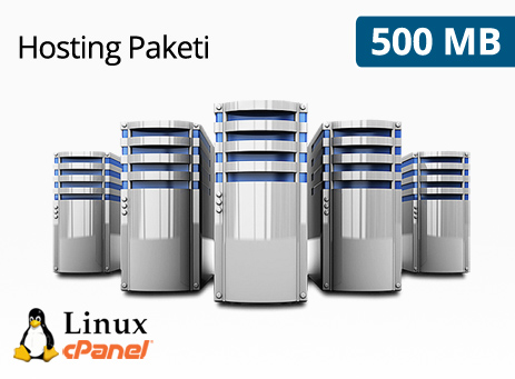 500 MB Hosting Paketi